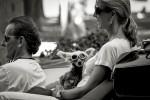 querformat-fotografie - Achim Katzberg - Street - Dogs - bike dog