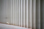 querformat-fotografie - Achim Katzberg - Street - Dogs - The lonely dog