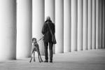 querformat-fotografie - Achim Katzberg - Street - Dogs - Street Dog Wiesbaden