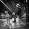 querformat-fotografie - Achim Katzberg - Street - Dogs - querformat-fotografie_Street_Street_Dogs-011