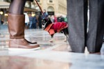 querformat-fotografie - Achim Katzberg - Street - Dogs - Milano Streets #10