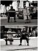 querformat-fotografie - Achim Katzberg - Street - Spontan B/W - Lonely I