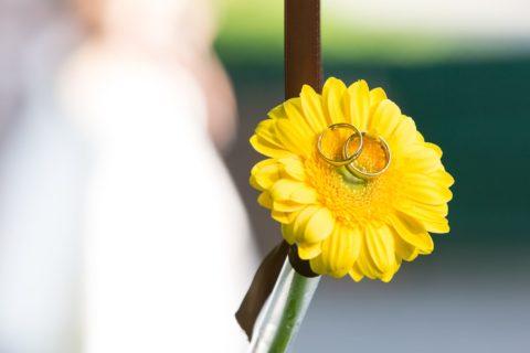 querformat-fotografie - Achim Katzberg - Hochzeit Denise & Julius - querformat-fotografie_Hochzeit_Denise_und_Julius-019