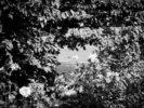 querformat-fotografie - Achim Katzberg - querformat-fotografie_workshop_street_fotografie_achim_katzberg-022