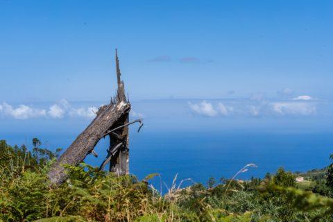 querformat-fotografie - Achim Katzberg - querformat-fotografie_Madeira-029