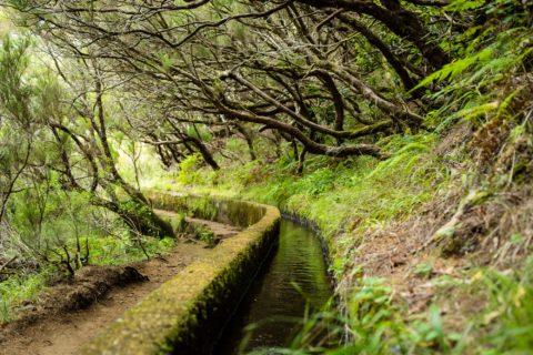 querformat-fotografie - Achim Katzberg - querformat-fotografie_Madeira-041