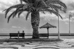 querformat-fotografie - Achim Katzberg - [untitled - Madeira / August 2018]