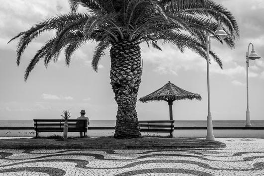 querformat-fotografie - Achim Katzberg - Diverse Motive im Format 19 x 27 cm - [untitled - Madeira / August 2018]